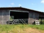 Hector MacPherson's barn